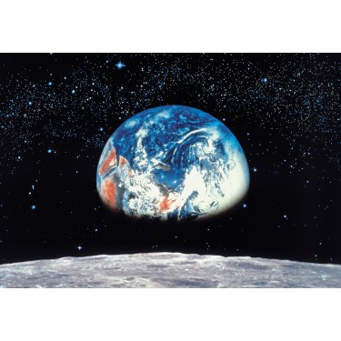 Earth Seen From Moon Mural