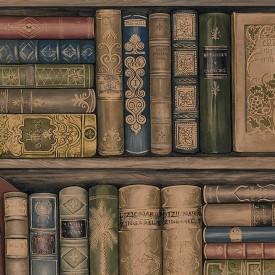 Library Bookshelves Wallpaper