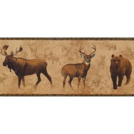North American Animals Border