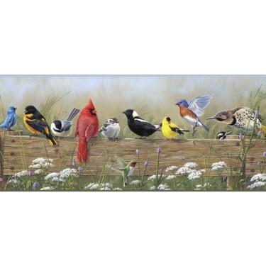 Bbc44671b Songbird Menagerie Border Discount Wallcovering