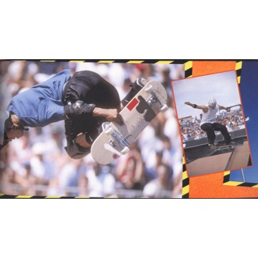 Skateboard Border