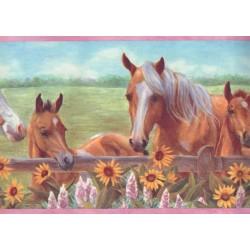 Harmony Horses Border