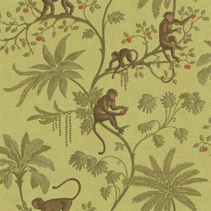 cr061671 jungle of monkeys wallpaper discount wallcovering