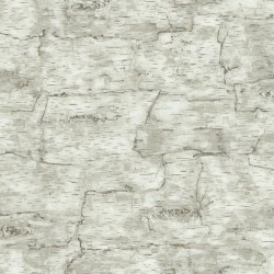 Birch Bark Wallpaper