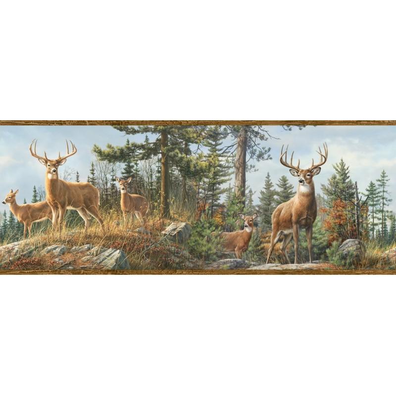 Whitetail Crest Border HTM48463B wallpaper lodge deer brown Easy-Walls prepasted