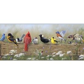 Songbird Menagerie Border