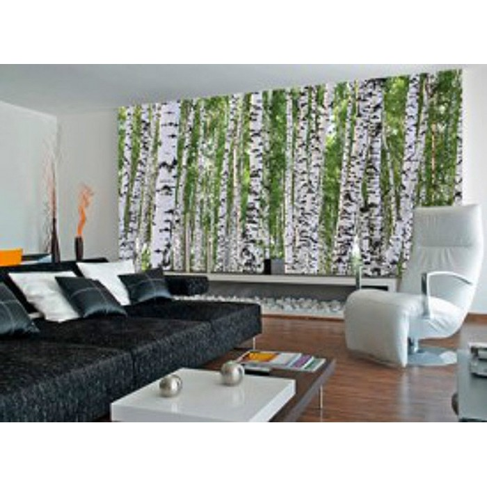 C865 Birch Trees Mural Discount Wallcovering