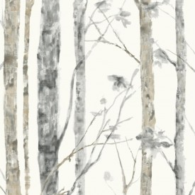 Peel & Stick Birch Trees Wallpaper