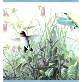 Hummingbirds Border