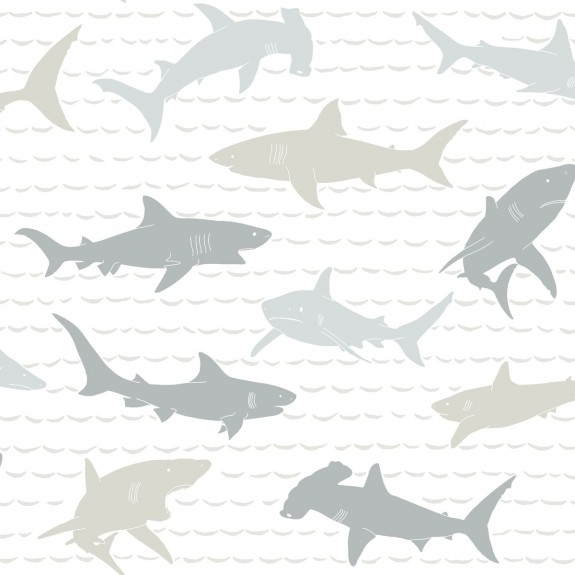 Shark Charades Wallpaper