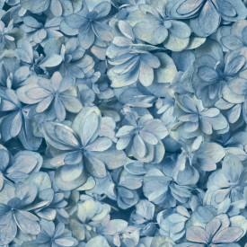 Hydrangea Bloom Wallpaper