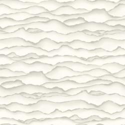 Singed Wallpaper