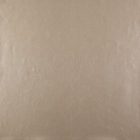 Oasis Wallpaper